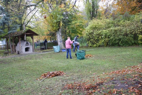 2019-11-09 Herbstputz (2)