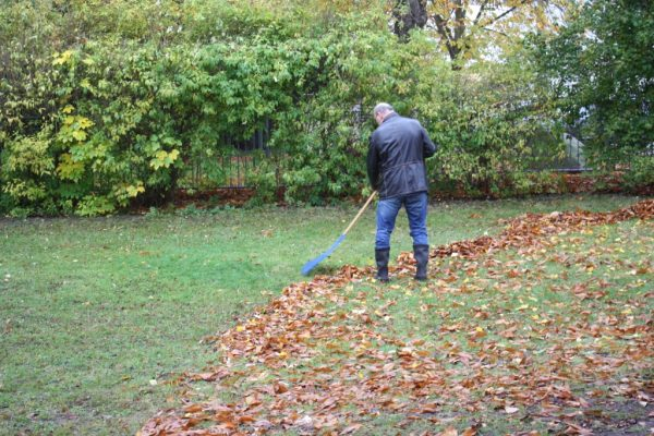 2019-11-09 Herbstputz (4)